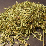 Zornia Latifolia (Maconha Brava) Grade A Foliage