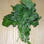 Sessantina Grossa (Broccoli Rabe) Seeds