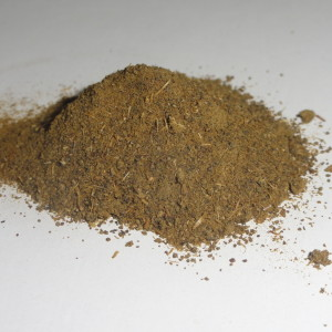 Calea Zacatechichi (Dream Herb) 10:1 Powder Extract