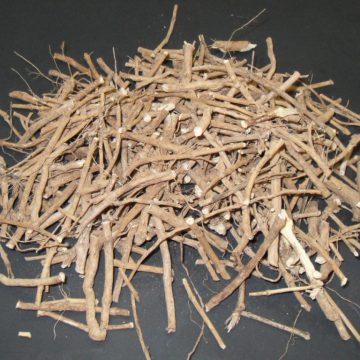 Silene Capensis (African Dream Root) Root Pieces
