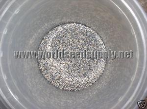 "Papaver Somniferum (""World Seed Mix"" Poppy) Seeds"