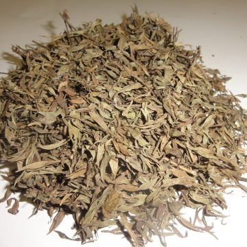Zornia Latifolia (Maconha Brava) Grade B Foliage