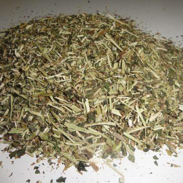 Lactuca Virosa (Wild Lettuce) Wildcrafted C/s Herb