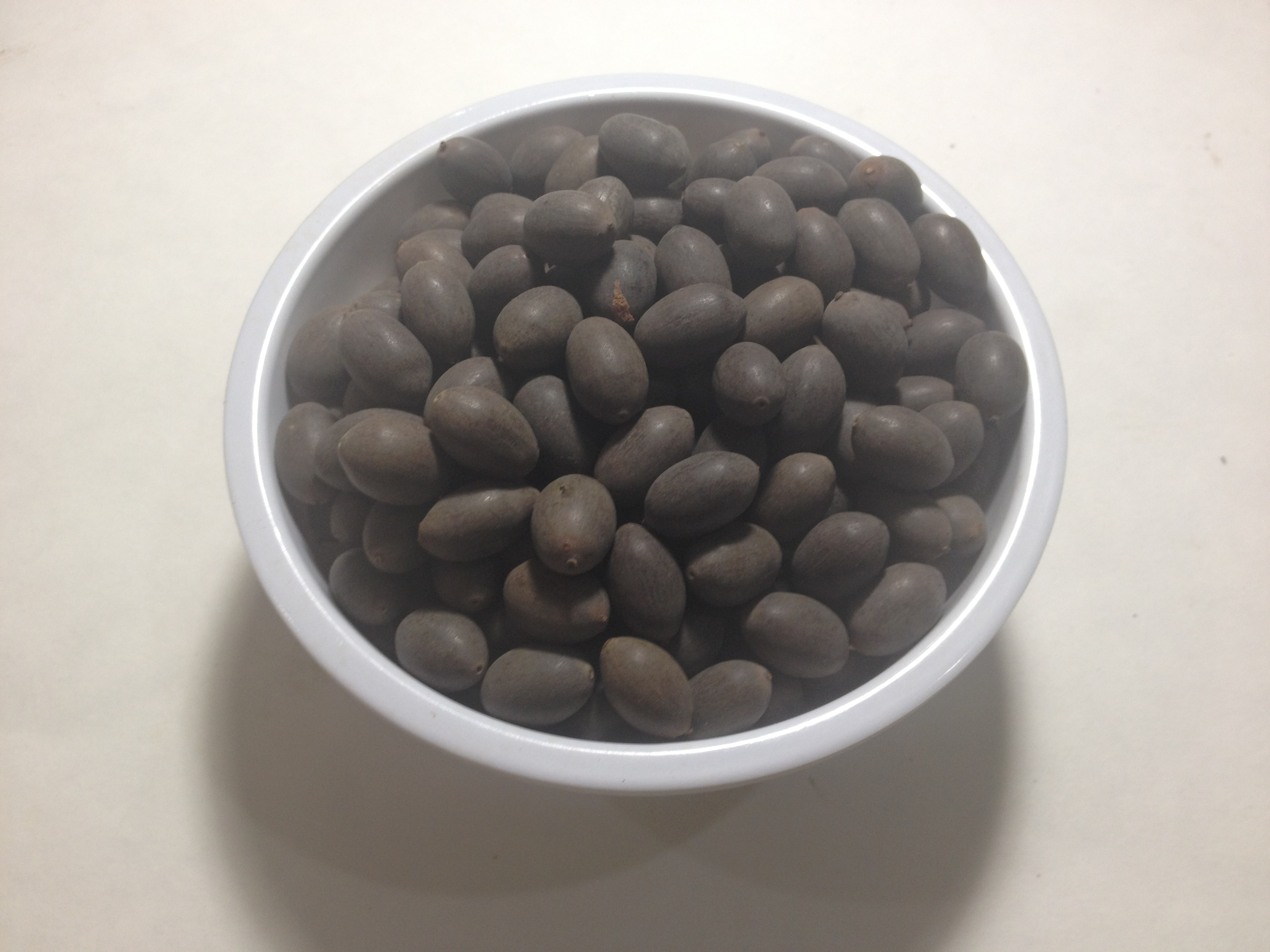 Red Lotus Seeds World Seed Supply