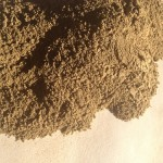Gynostemma Pentaphyllum (Jiaogulan) Herb Powder by World Seed Supply